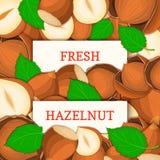 Rektangeletikett för två vit på hasselnötfruktbakgrund Vektorkortillustration Stock Illustrationer