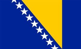 Rektangulär Bosnien och Hercegovina flagga royaltyfri illustrationer