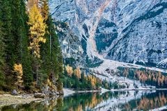 Relájese cerca de Lago di Braies imágenes de archivo libres de regalías