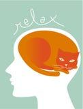 Relájese como un gato Imagen de archivo libre de regalías