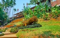 Relájese en el jardín de Mae Fah Luang, Doi Tung, Tailandia fotos de archivo