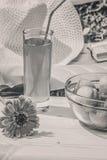 Relájese en el jardín en un día de verano soleado, B/W Foto de archivo