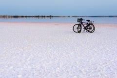 Relájese en el lago de sal Imagen de archivo libre de regalías