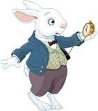 Relógio branco das posses do coelho Imagens de Stock Royalty Free
