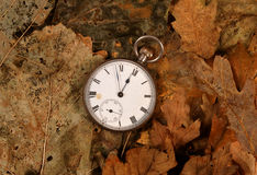Relógio de bolso antigo nas folhas inoperantes foto de stock