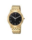 Relógio de pulso luxuoso do ouro dos homens fotografia de stock