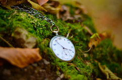 Relógio velho nas folhas da queda Fotos de Stock Royalty Free