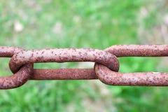 Relação marrom oxidada oxidada de uma corrente forjada forte velha do ferro do metal contra um fundo do verde Foto de Stock