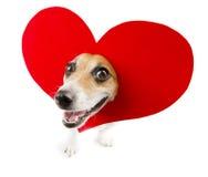 Relacionamento engraçado romântico imagem de stock