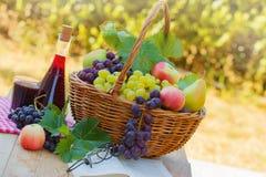 Relajándose con el vino, la fruta y el libro Fotografía de archivo libre de regalías