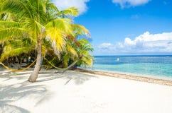 Relaj?ndose en la silla - Belice Cayes - peque?a isla tropical en la barrera de arrecifes con la playa del para?so - sabida para  imagen de archivo