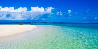 Relaj?ndose en la silla - Belice Cayes - peque?a isla tropical en la barrera de arrecifes con la playa del para?so - sabida para  foto de archivo