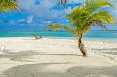 Relaj?ndose en la silla - Belice Cayes - peque?a isla tropical en la barrera de arrecifes con la playa del para?so - sabida para  imagen de archivo libre de regalías