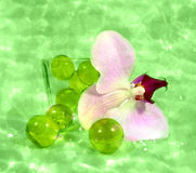 Relajación Imagen de archivo libre de regalías