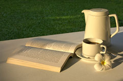 Relajación con un libro y un Cuppa Imagen de archivo libre de regalías