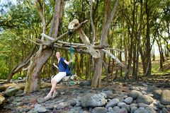 Relajación turística femenina joven en un oscilación hecho a mano en la playa rocosa del valle de Pololu en la isla grande de Haw Foto de archivo libre de regalías