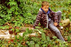 Relajado y pacífico El niño pequeño relaja la sentada en árbol El niño pequeño se relaja en bosque Relájese, vida es hermoso fotos de archivo