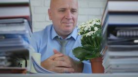 Relaje al empresario Looking To del rd una flor en sitio de la oficina imágenes de archivo libres de regalías