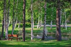 Relaje el lugar cerca de la charca en parque del verano Fotografía de archivo libre de regalías