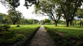Relaje el tiempo en el parque público del lumpini Fotos de archivo libres de regalías