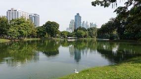 Relaje el tiempo en el parque público del lumpini Foto de archivo libre de regalías