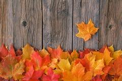 Relaje el tiempo en temporada de otoño Hoja de arce roja en la tabla fotografía de archivo libre de regalías
