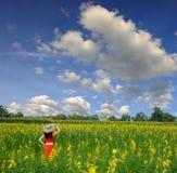 Relaje a la mujer en campo de flor amarillo y cielo azul Imágenes de archivo libres de regalías