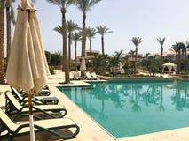 Relaje la piscina con agua azul clara con los sunbeds para tomar el sol con las sombrillas contra el contexto de palmas verdes y  Fotografía de archivo libre de regalías