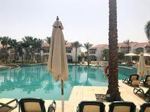 Relaje la piscina con agua azul clara con los sunbeds para tomar el sol con las sombrillas contra el contexto de palmas verdes y  Imagenes de archivo