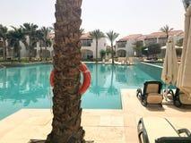 Relaje la piscina con agua azul clara con los sunbeds para tomar el sol con las sombrillas contra el contexto de un tronco de la  Fotos de archivo libres de regalías