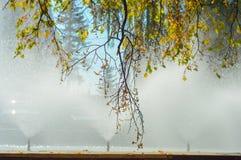 Relaks i medytacja, fontanna w parku Obraz Royalty Free