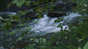 Relaksujący strumień śpieszy się nad skałami (6 6) zbiory wideo
