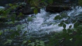 Relaksujący strumień śpieszy się nad skałami (5 6) zbiory wideo
