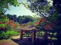 Relaksujący teren w parku, Japonia zdjęcia royalty free