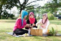 Relaksujący z przyjaciółmi w parku Zdjęcie Royalty Free