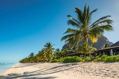 Relaksujący wakacje w tropikalnym raju Mauritius wyspa Obrazy Royalty Free