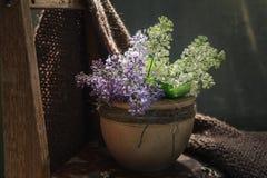 Relaksuje herbaty z officinal traw? stellaria graminea w przejrzystej fili?ance na drewnianym karczu w mszystym lato s?onecznym d fotografia royalty free