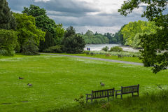 Relaksuje w parku Obraz Stock