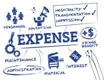 Relatório da despesa ilustração royalty free