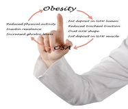 Relationship between OSA and obesity. Diagram of Relationship between OSA and obesity Royalty Free Stock Photo
