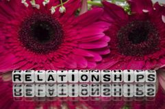 Relationships text message. With pink flowers in the background Stock Images