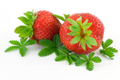 Relatively cool strawberry Royalty Free Stock Images