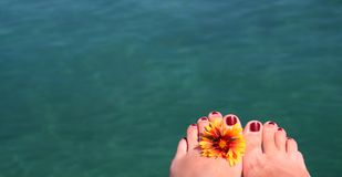 Relax 1. Female feet with flower, background is ocean-water Royalty Free Stock Images