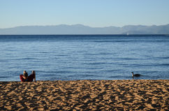 Relax. One man relaxing on the sand beach of lake Tahoe California North America Stock Images