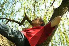 Relax. Young men relaxing on tree in park Stock Images