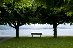 Relax. Bench at a relaxing spot at the shadow of two trees in a park in front of the lake Zug, Switzerland Stock Photography