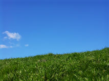 Relax. Blue sky and green grass Stock Image