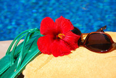 Relax. Ation and fun in the sun at a tropical resort Royalty Free Stock Image