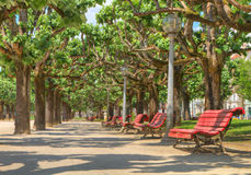 Relax on apark bench Royalty Free Stock Photography
