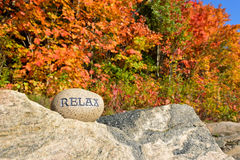 Relax with Autumn Trees Royalty Free Stock Images
